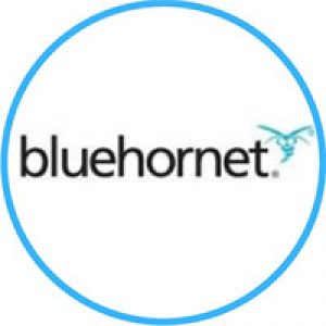 BlueHornet